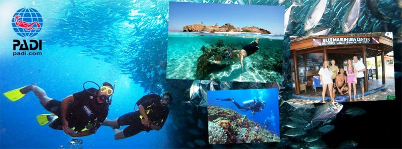 Lombok Snorkeling and Diving Gili