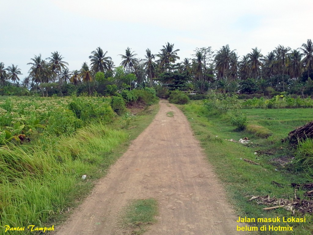 land-for-sale-cemara-beach-front- (3)