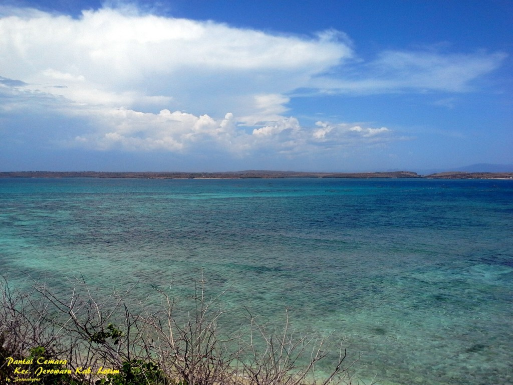 land-for-sale-cemara-east-lombok- (2)