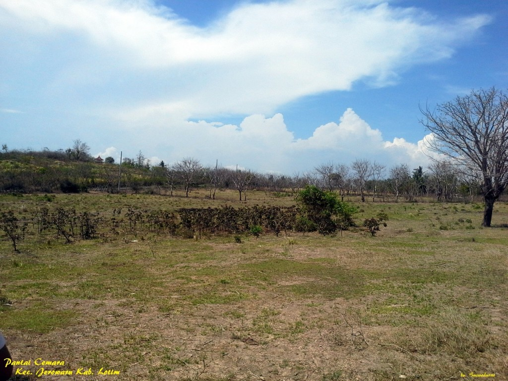 land-for-sale-cemara-east-lombok- (3)