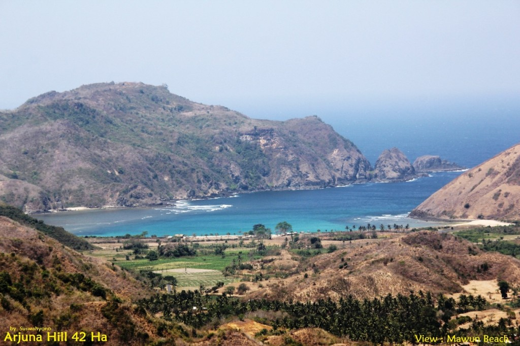 land-for-sale-hill-view-south-lombok- (3)