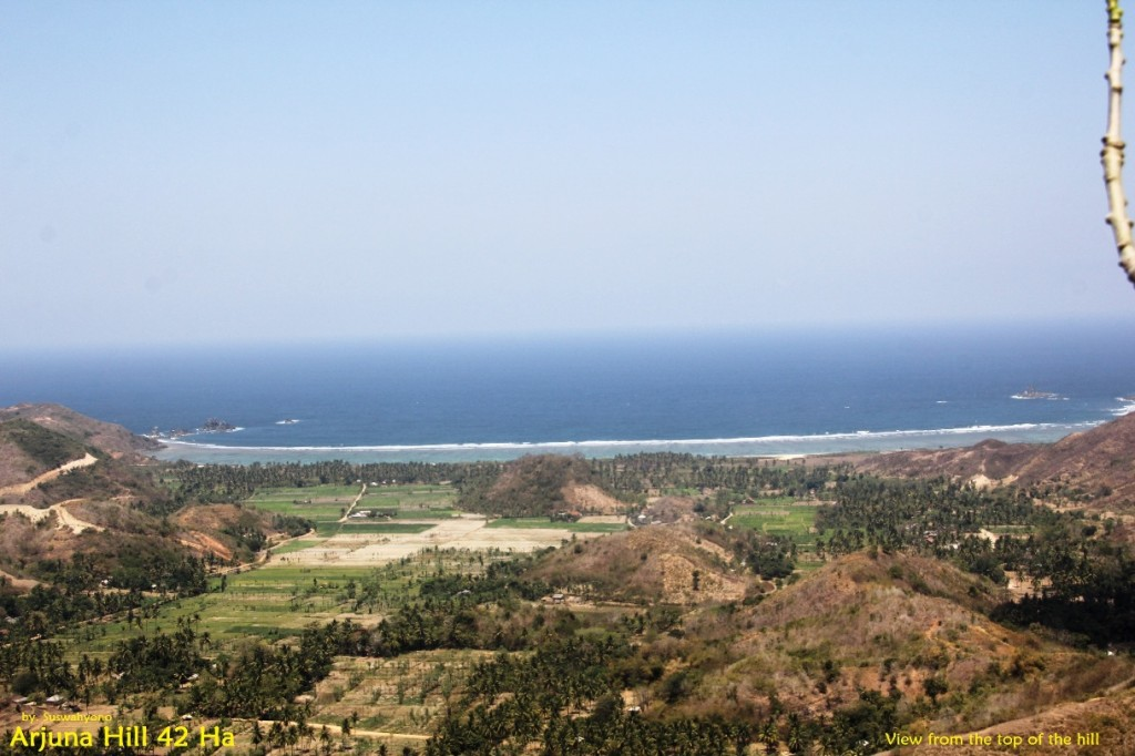 land-for-sale-hill-view-south-lombok- (5)