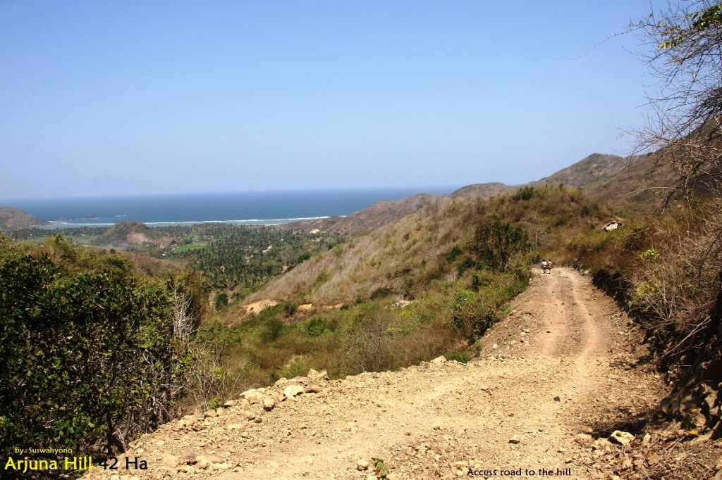 land-for-sale-hill-view-south-lombok- (6)