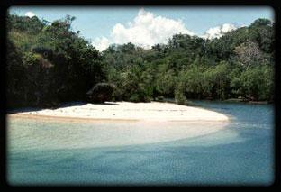 Sungaia