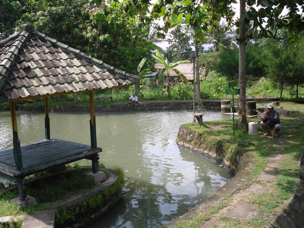 proeprty for sale mataram lombok (3)