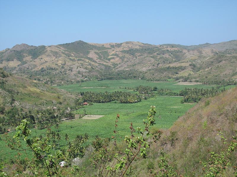 Gunung Bagik 3