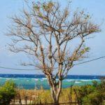 PicsArt_06-03-06.39.41